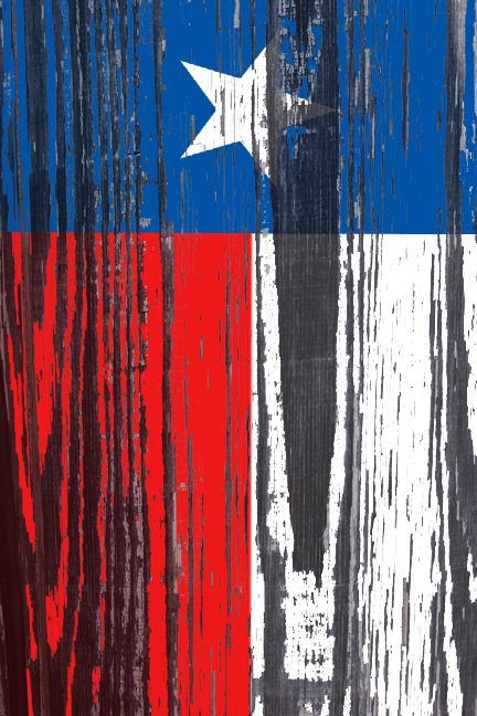 like the best elongated it and painted the texas flag